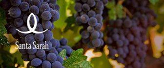 Българската Санта Сара вече си има своя винарна