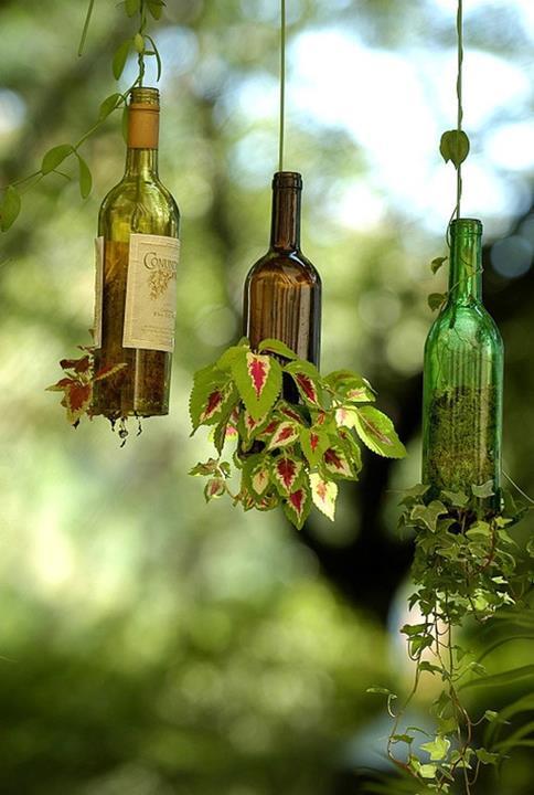 Бутилките от вино в двора и градината