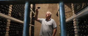 Ползата от червеното вино била преувеличена