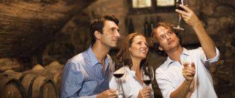 Видове винени сноби и как да се справяме с тях