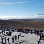 Винарска изба Вила Мелник представя новите си вина на Трифон Зарезан!