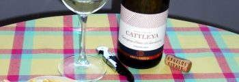 Cattleya Sauvignon Blanc & Chardonnay 2015 – Angelus Estate