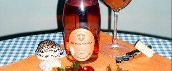 Rose 2014 – Santa Maria