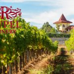 Винарска изба Рупел / Rupel Winery