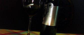 Sensus 2009 Spiritus Sanctus
