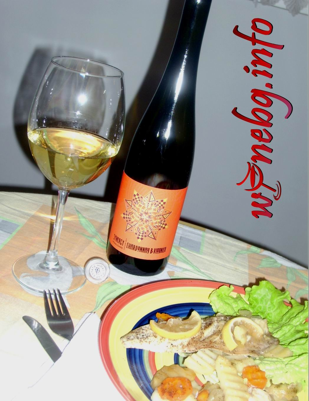 Synergy 2011 Charonnay & Viognier – Midalidare Estate