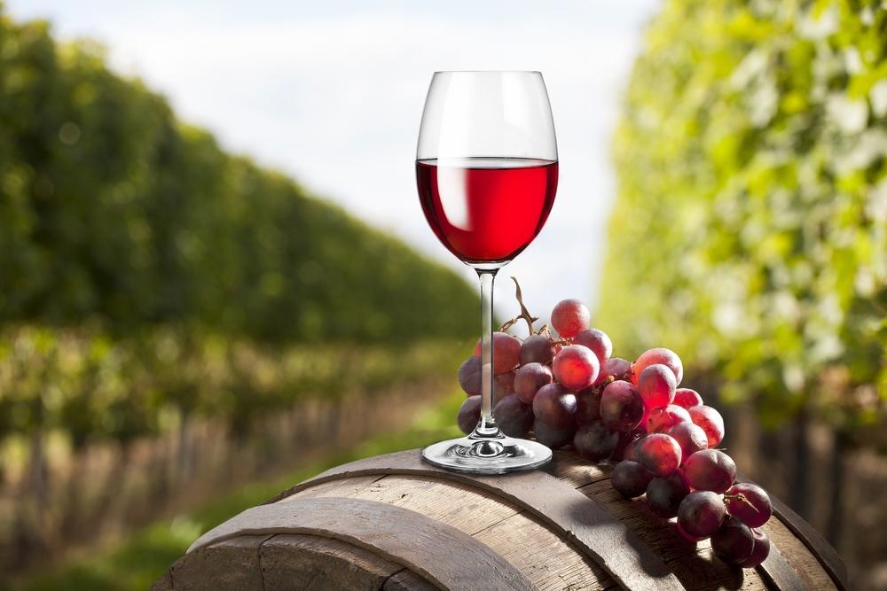 Технология за производство на червено вино в детайли