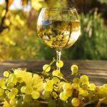 Технология за производство на бяло вино