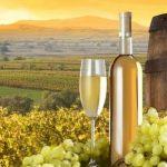 Дъб и вино – неповторима комбинация