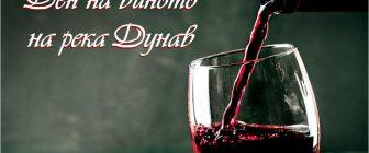 Ден на виното на река Дунав