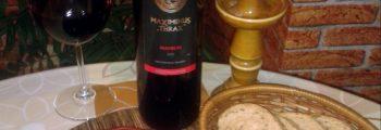 "Мавруд 2008 ЛВК ""Винарска изба Брестовица"" / Mavrud 2008 Brestovitsa Winery"