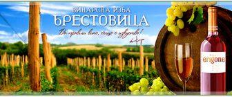 Винарска изба Брестовица