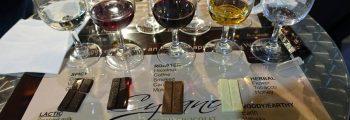 Дегустация на белгийски шоколад с български вина за първи път на ВИНАРИЯ 2017