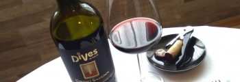 Cabernet Sauvignon-Barrique 2013 – DiVes Winery