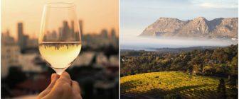 Къде трябва да е следващата ви почивка според любимото ви вино