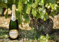 Топ 5 на най-скъпото шампанско