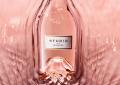 Анджелина Джоли и Брад Пит пускат ново вино заедно