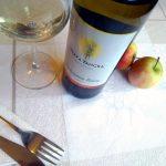 Sauvignon Blanc 2017 - Terra Tangra