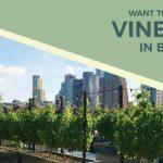 Първата в света винарна на покрива