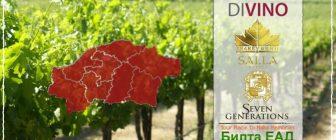 """Създаване на """"Карта за винотур на Североизток"""""""