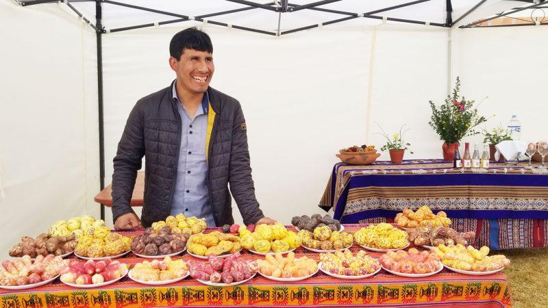 """Перуански земеделец произвежда """"Вино"""" от картофи"""