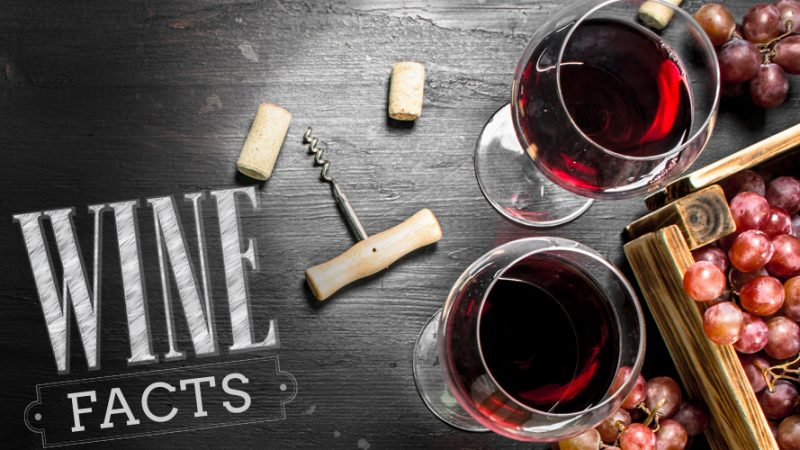 10 любопитни факта за виното, които трябва да знаете