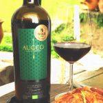 Cabernet Sauvignon Reserve Organic Wine 2015 - Augeo Family Estate