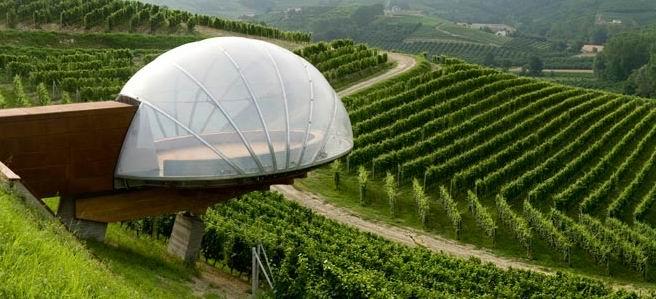 7 страхотни винарни за дегустации за запалените винолюбители