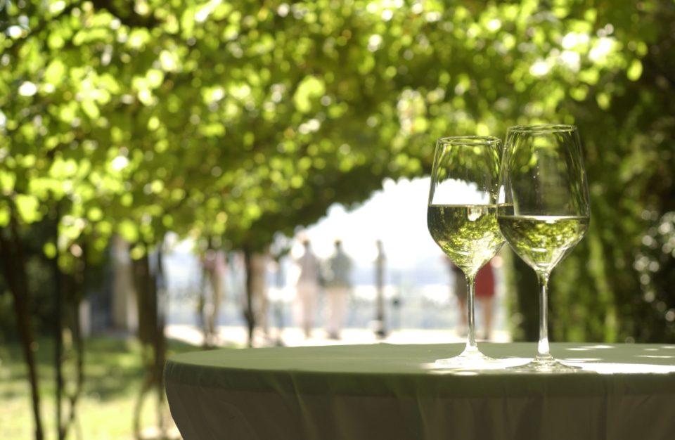 Германският институт за вино започва да приема заявления за участие във фестивала Ризлинг седмици 2020