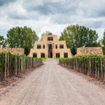 Въведение в аржентинското вино