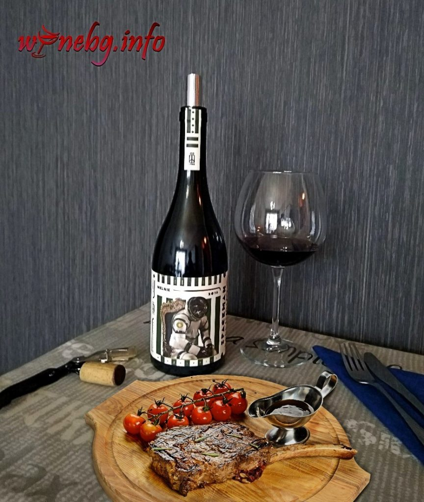 Spaceman Melnik 2018 - Wine Hippies