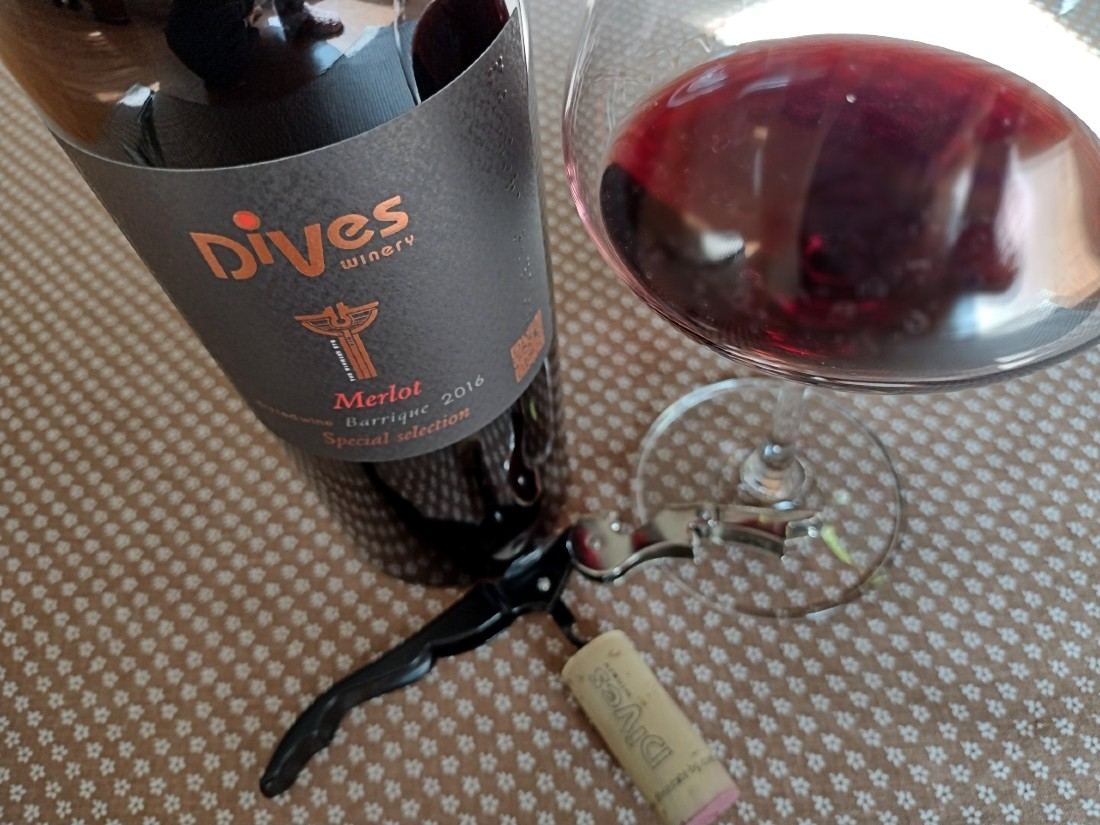 Merlot Barrigue 2016 – Dives Winery