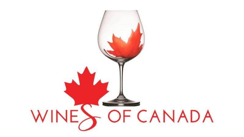 Канадското вино е по-добро, отколкото си мислите